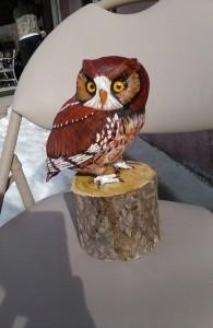 2017 Owl 4