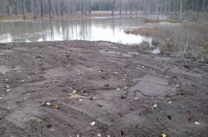 10-29-2016 Dirt platform, pic 7